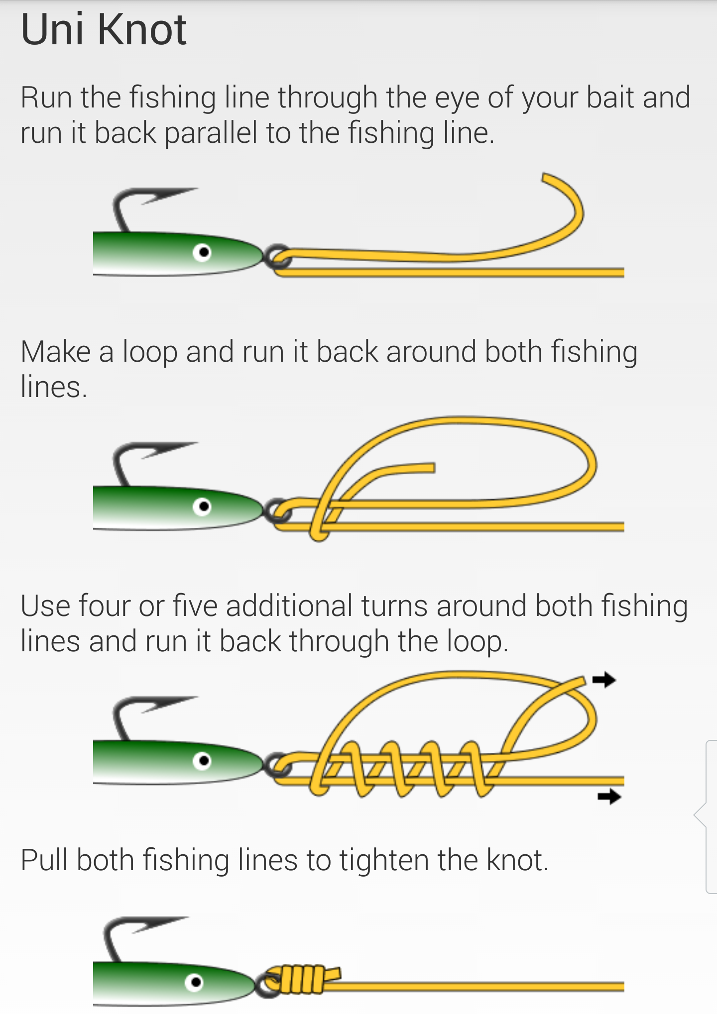 Fishing knots cartersflcharters for The fishing line